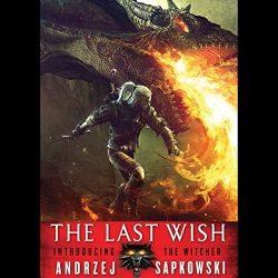 The Last Wish Audiobook